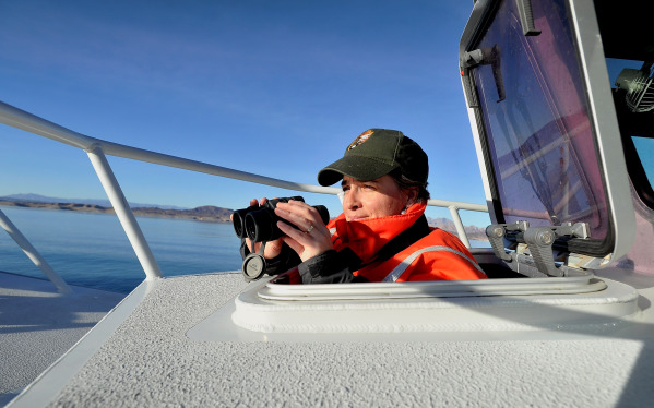 Theresa Thom, aquatic ecologist with the National Park  Service peers out from an open boat hatch at Lake Mead in search of eagles on Tuesday, Jan. 12, 2016. Biologists and volunteers from the Nat ...
