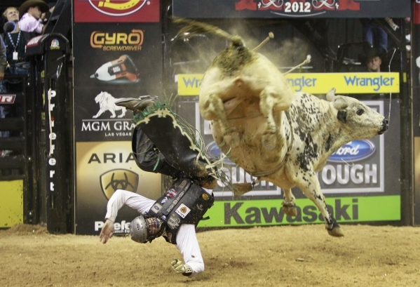Jordan Hupp of the U.S. gets thrown off a bull during the Built Ford Tough Series Professional Bull Riders (PBR) World Finals at the Thomas & Mack Center in Las Vegas, October 28, 2012. REUTER ...