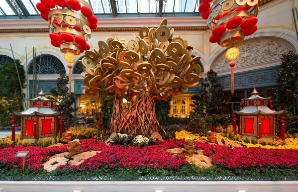 An 18-foot Chinese money tree, made of 384 gold coins weighing 3,000 pounds, dominates the north garden of Bellagio's Conservatory and Botanical Gardens, which celebrates the Year of the Mon ...