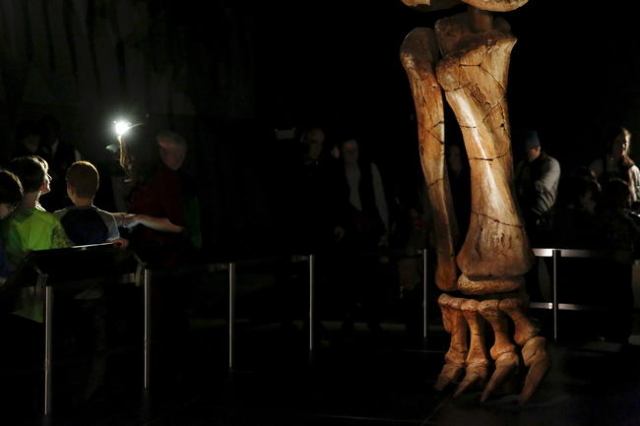 People stand near the skeleton cast of a titanosaur during a media preview at the American Museum of Natural History in New York January 14, 2016. REUTERS/Shannon Stapleton