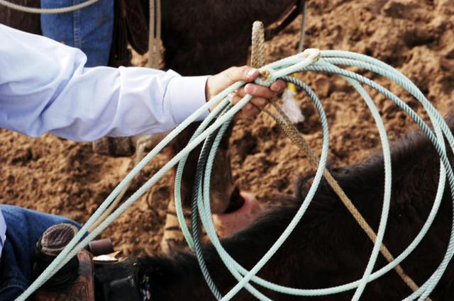 Rodeo roping. (Thinkstock)