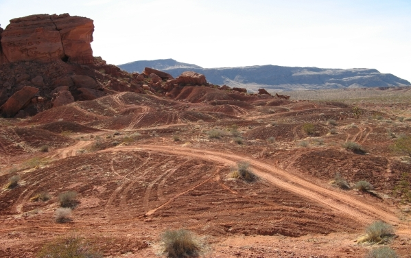 A photo from an August report by Friends of Gold Butte shows off-road vehicle tracks, some of them fresh, near a petroglyph site on public land in northeast Clark County. (Friends of Gold Butte)