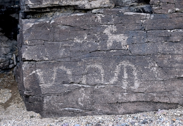 Petroglyphs are seen on an outcropping of rocks in the high desert area of the Castle Mountains Monday, Feb. 1, 2016. A 29,000 acre parcel southwest of Searchlight in California is proposed as a n ...