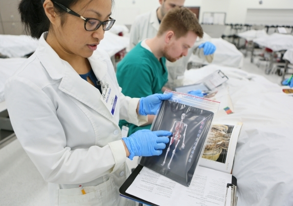 Diana Trang, a first year medical student, demonstrates the use of an application on a tablet during a break in a gross anatomy lab at Touro University Nevada Tuesday, Feb. 2, 2016, in Henderson.  ...