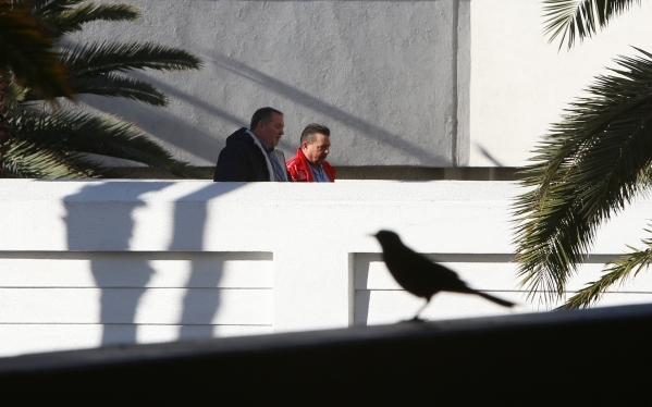 A bird is silhouetted sitting in a parking garage as tourists cross a pedestrian overpass at the Treasure Island hotel-casino on Tuesday, Feb. 2, 2016, in Las Vegas. Tuesday's expected high  ...