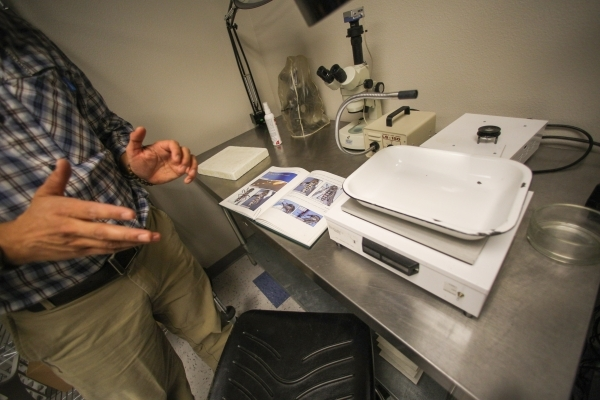 Environmental Health Supervisor Vivek Raman explains how the Southern Nevada Health District traps 26,000 mosquitos a year to send for testing at an SNHD lab in Las Vegas on Friday, Feb. 5, 2016.  ...