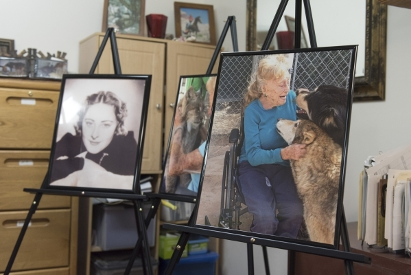Photos of Bonnie Levinson, former owner and operator of Bonnie Springs Ranch in Las Vegas, are seen in the ranch's office Sunday, Feb. 7, 2016. Levinson passed away on Jan. 29 at 94 years ol ...