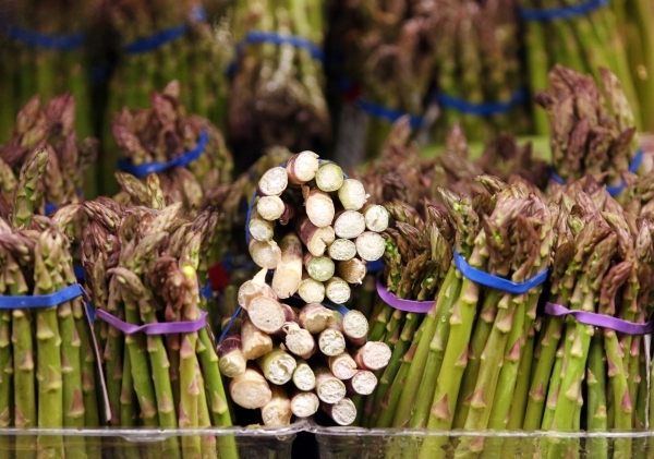 Asparagus stalks are shown at Smith´s grocery store Thursday, Feb. 18, 2016, in Las Vegas. Usdavin offered nutritional facts and tips for shopping with goal of healthier eating. Ronda Churchill ...