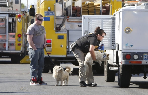Clark County Animal Control takes two dogs that were rescued from a burning home at 4943 Lana Drive on Wednesday, Feb. 24, 2016. One person died in the fire. Bizuayehu Tesfaye/Las Vegas Review-Jou ...