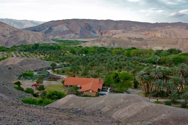 China Ranch Date Farm (Courtesy photo)