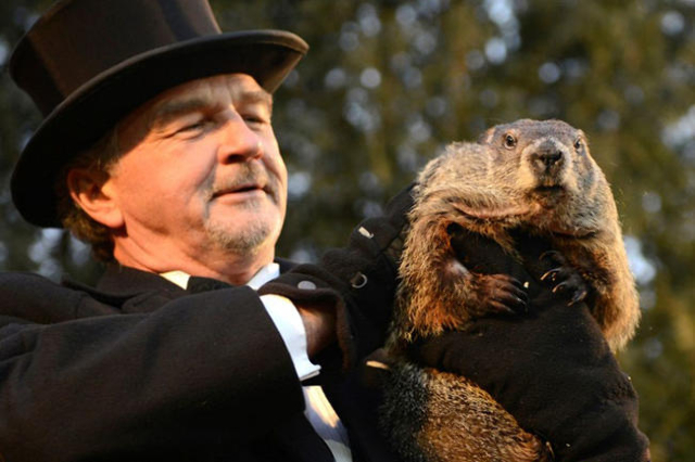 Groundhog co-handler John Griffiths holds up groundhog Punxsutawney Phil after Phil's annual weather prediction on Gobbler's Knob on the 130th Groundhog Day in Punxsutawney, Pennsylvan ...
