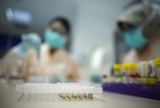 Lab technicians clean and prepare locally collected mosquitos before testing for the presence of a bacteria believed to help reduce the chances of the mosquitoes passing dengue and Zika virus on t ...