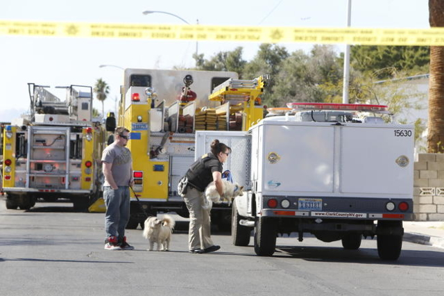 Clark County Animal Control takes two dogs that were rescued from a burning home at 4395 Lana Drive on Tuesday, Feb. 24, 2016. One person died in the fire.(Bizuayehu Tesfaye/Las Vegas Review-Journ ...