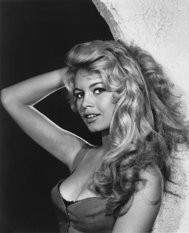 "French ""sex kitten""Brigitte Bardot, photographed in 1958 by Yousuf Karsh. (Courtesy/Bellagio Gallery of Fine Art)"
