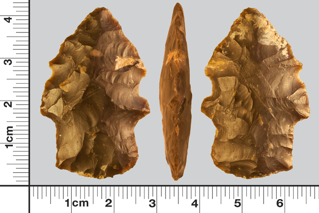 Researchers documented this Great Basin stemmed projectile point during field work in Lincoln County that turned up evidence of some of the first human inhabitants of the area. Courtesy of Zach Sc ...