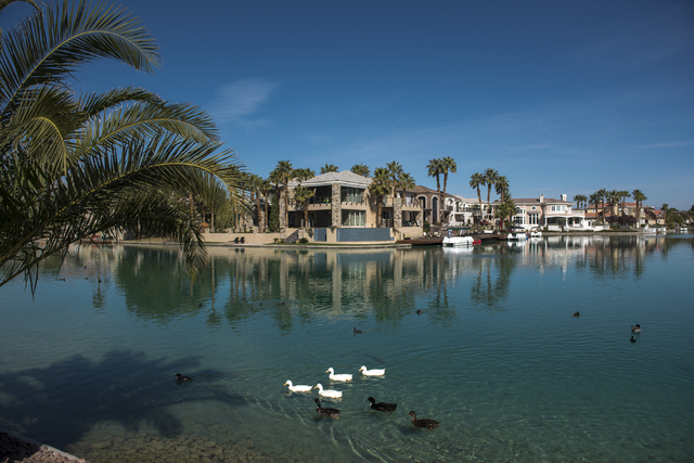 Ducks are seen swimming at the West Sahara Lake during warm weather in Las Vegas on Friday, March 4, 2016. Fridayճ forecast is mostly sunny with a high of 79 and a low of 57 degrees. Saturda ...