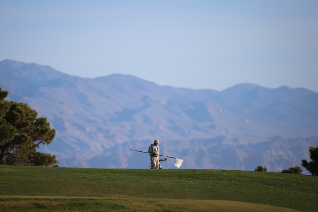 A worker changes the hole location on a green at the Angel Park Golf Club in Las Vegas on Friday, March 25, 2016. (Brett Le Blanc/Las Vegas Review-Journal Follow @bleblancphoto)