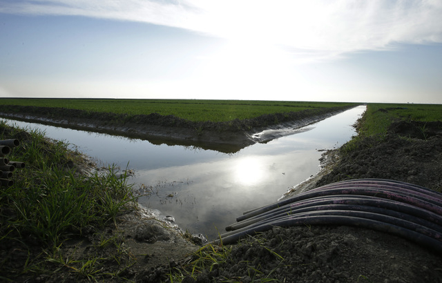 Water flows through an irrigation canal to crops near Lemoore, Calif., on Feb. 25, 2016. (AP Photo/Rich Pedroncelli)