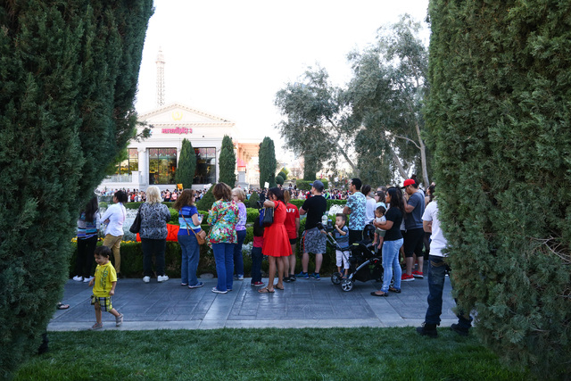 "People gather for the taping of a segment of ""The Ellen DeGeneres Show"" outside of Caesars Palace in Las Vegas on Tuesday, March 1, 2016. Chase Stevens/Las Vegas Review-Journal F ..."