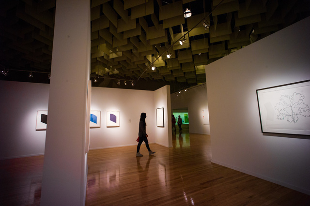 The Ellsworth Kelly exhibition, at UNLV's Barrick Museum through May 14. Chase Stevens/Las Vegas Review-Journal Follow @csstevensphoto