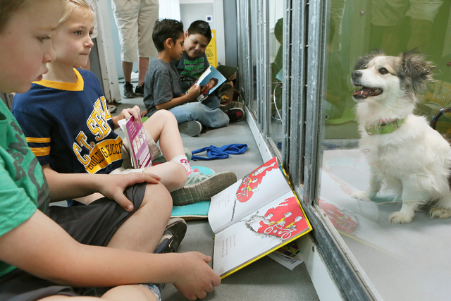 Sewell first-graders, from left, Nico Larocco and Amber Stewart, take turns reading to a Chihuahua named Precious at The Animal Foundation March 1. Ronda Churchill/View