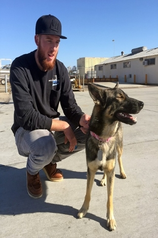 Conner Lamb carries Luna, a 1 1/2-year-old dog that fell off a fishing boat in February, after Luna arrived by a Navy commuter flight Wednesday, March 16, 2016, at Naval Base Coronado in Californi ...