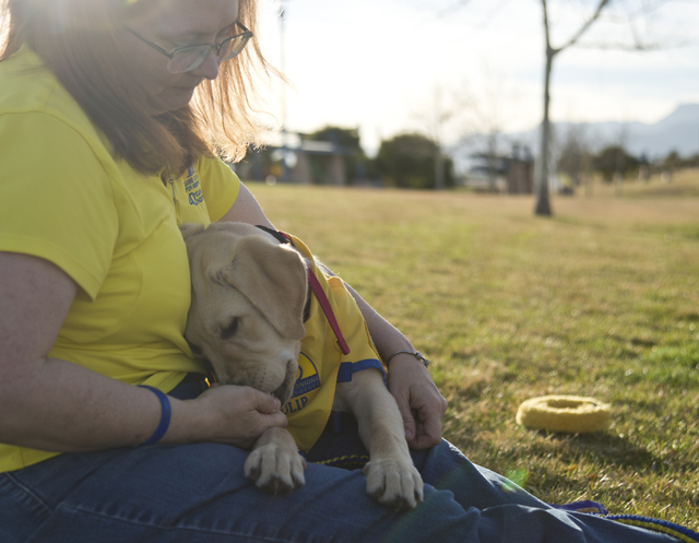 Summerlin-area resident Cindy Thompson and puppy Tulip take a break from assistance dog training at the Kellogg-Zaher Sports Complex on March 1. Thompson is fostering Tulip on behalf of the nonpro ...