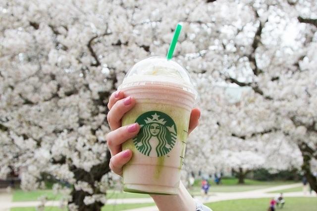 Cherry Blossom Frappuccino (Starbucks)