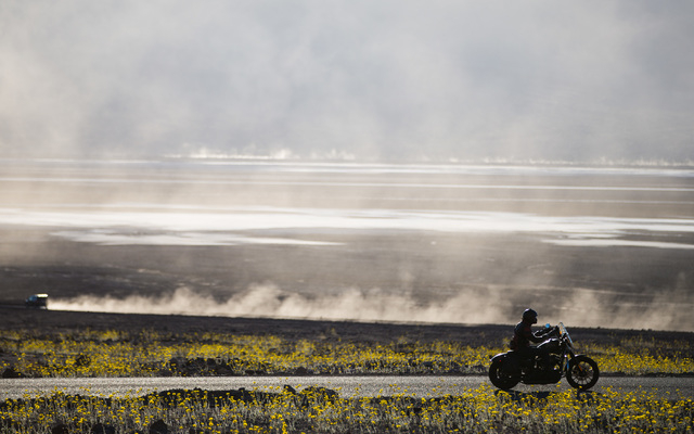 """A motorcycle drives along Badwater Road in Death Valley National Park, Calif., on Saturday, Feb. 27, 2016. The National Park Service said in a statement that the """"current bloom in Death Valley exc ..."""