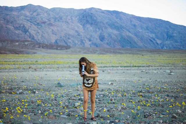 """Olivia Wyatt films wildflowers with a Super 9 camera along Badwater Road in Death Valley National Park, Calif., on Saturday, Feb. 27, 2016. The National Park Service said in a statement that the """" ..."""