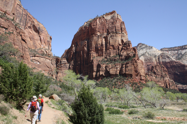 Spring is one of the best times to visit Zion National Park in Utah. Deborah Wall/Special to View