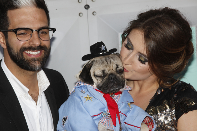 Doug the Pug held by owner Leslie Mosier and a guest walk the red carpet at the 51st Academy of Country Music Awards Sunday, April 3, 2016, at the MGM Grand in Las Vegas.  (Rachel Aston/Las Vegas  ...