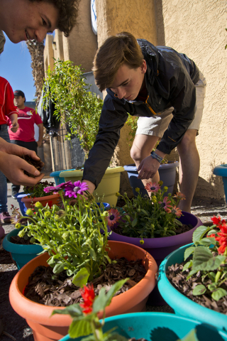 Cody Buckley, left, and Matthew Wickenhiser spread plant bedding into pots during a volunteer event held by the Gaels Give Hope organization from Bishop Gorman High School, benefitting a New Genes ...