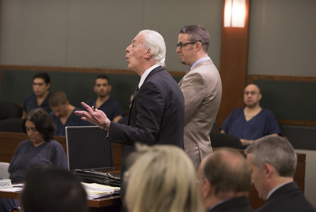 "Defense attorney William Terry argues for leniency during the sentencing hearing for embattled attorney Brian Bloomfield at the Regional Justice Center on Monday, March 7, 2016 in Las Vegas. ""The  ..."