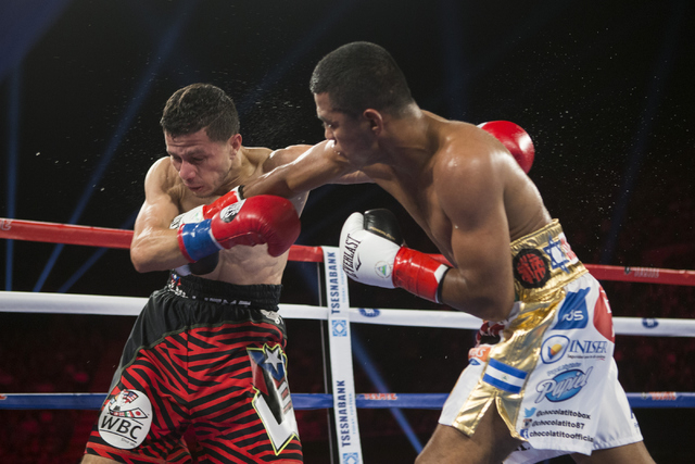 Roman Gonzalez, right, connects a right punch against McWilliams Arroyo in the Middleweight World Championship bout at The Forum on Saturday, April 23, 2016, in Inglewood, Calif. Gonzalez won by u ...