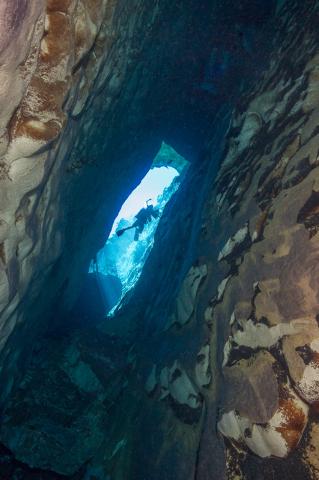 A diver counts endangered pupfish inside Devil's Hole, 90 miles west of Las Vegas, in April 2015. (Brett Seymour/National Park Service)
