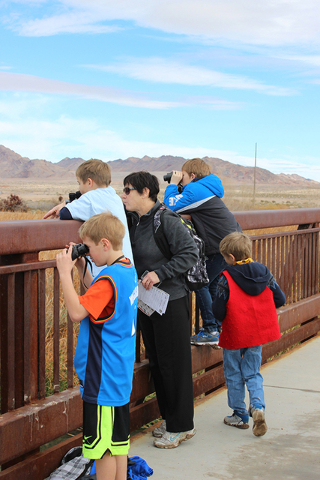 Citizen scientists count birds as part of the Bioblitz on Jan. 31, 2015, at Clark County Wetlands Park. Another Bioblitz is planned from 5:30 to 8:30 p.m. April 29 and 6:30 to 9:30 a.m. April 30 a ...