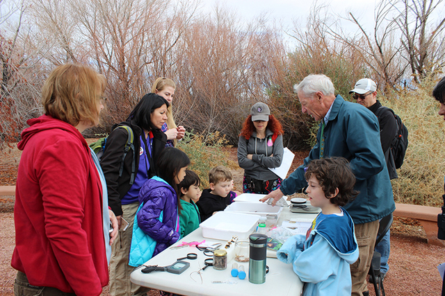 Citizen scientists record the birds they observed as part of the Bioblitz on Jan. 31, 2015, at Clark County Wetlands Park. Another Bioblitz is planned from 5:30 to 8:30 p.m. April 29 and 6:30 to 9 ...