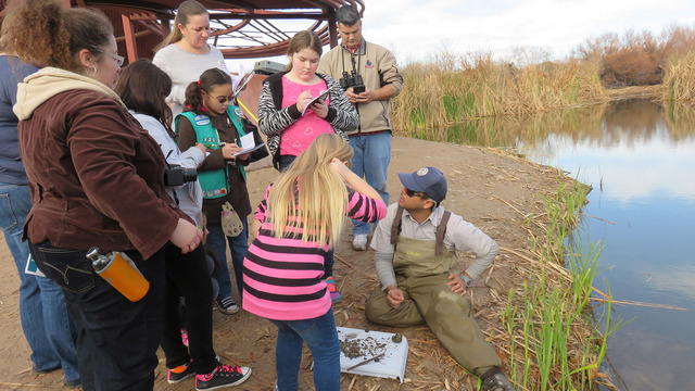Citizen scientists record their count of fish as part of the Bioblitz on Jan. 31, 2015, at Clark County Wetlands Park. Another Bioblitz is planned from 5:30 to 8:30 p.m. April 29 and 6:30 to 9:30  ...