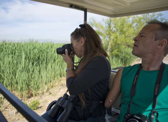 Ann-Julie Robbins, left, and Randy Robbins watch for birds April 4 at the Henderson Bird Viewing Preserve. Daniel Clark/View Follow @DanJClarkPhoto
