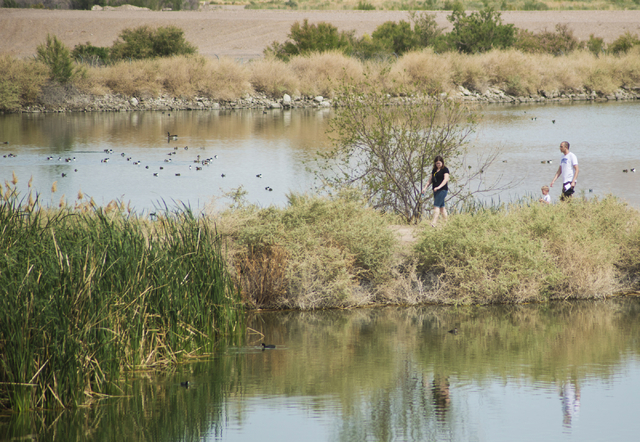 Visitors walk between two of the nine ponds at the Henderson Bird Viewing Preserve, 350 E. Galleria Drive, April 4. Daniel Clark/View Follow @DanJClarkPhoto