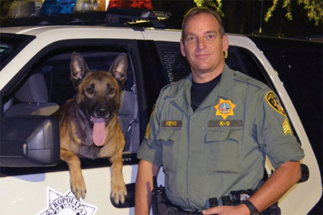 K-9 patrol dog Nicky. (@LVMPD via Twitter)