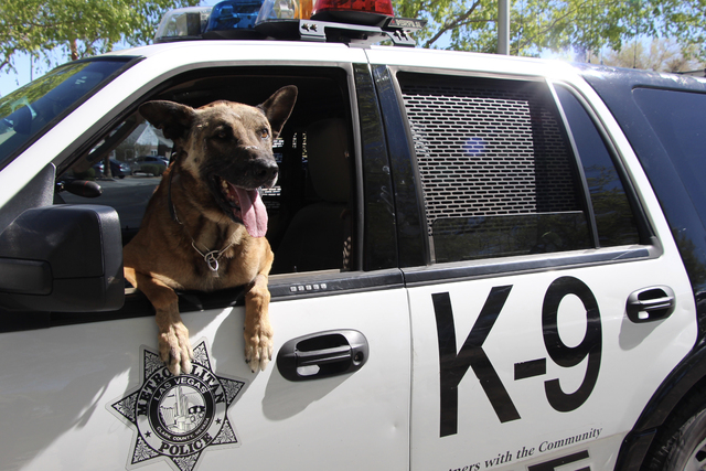 k9 nicky was shot killed by police las vegas review journal. Black Bedroom Furniture Sets. Home Design Ideas