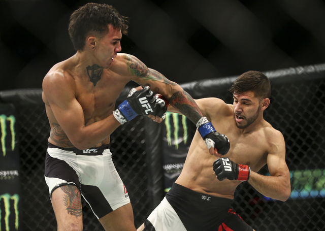Andre Fili, left, and Yair Rodriguez trade blows during a featherweight bout in UFC 197 at the MGM Grand Garden Arena in Las Vegas on Saturday, April 23, 2016. Chase Stevens/Las Vegas Review-Journ ...