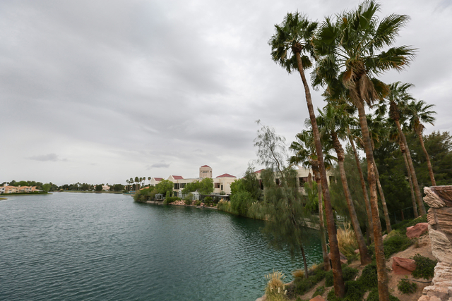 Wind blows through palm trees at Lake Jacqueline April 8. Brett Le Blanc/View