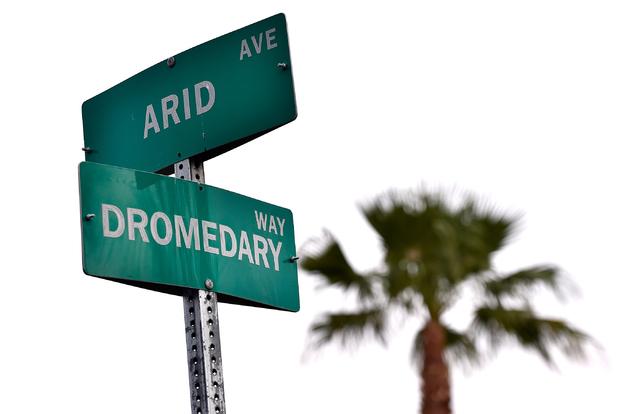Dromedary Way at Arid Avenue is seen Monday, April 25, 2016, in Las Vegas. (David Becker/Las Vegas Review-Journal Follow @davidjaybecker)