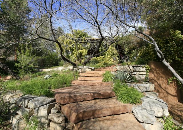 Landscape designer Jay Pleggenkuhle created a symphonic garden of desert plants that paint the landscape. (ELKE COTE/MILLIONS)