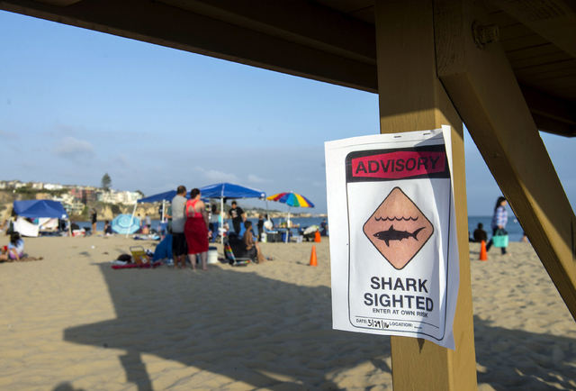 A possible shark sighting at Corona del Mar State Beach closes the shoreline on Sunday, May 29, 2016.  Lifeguards shut down the beach on Sunday after a swimmer was pulled injured from the water wi ...