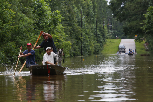 Roland Courville steers a boat across Mill Creek Road as he helps people escape from a neighborhood cut off by a flooded Spring Creek, Friday, May 27, 2016, in Magnolia, Texas. (Michael Ciaglo/Hou ...