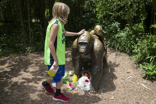A child touches the head of a gorilla statue where flowers have been placed outside the Gorilla World exhibit at the Cincinnati Zoo & Botanical Garden, Sunday, May 29, 2016, in Cincinnati. (Jo ...